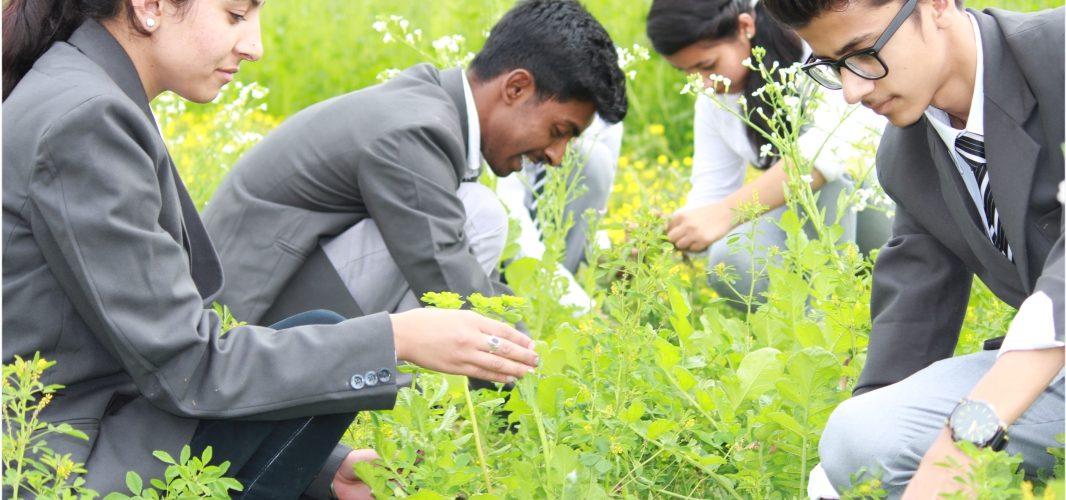 B.Sc. Agriculture Colleges Punjab