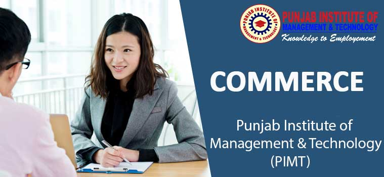 commerce colleges in punjab